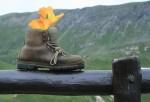 chaussure-rando