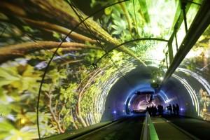 le-tube-nouveau-tunnel-de-la-croix-rousse